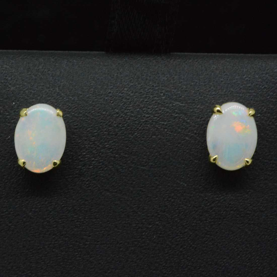 Solid opal earrings set in 14ct yellow gold 8x6